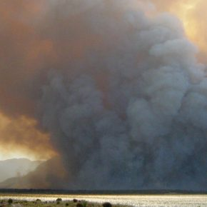 Smoke and Fire in the Kogelberg Biosphere Reserve